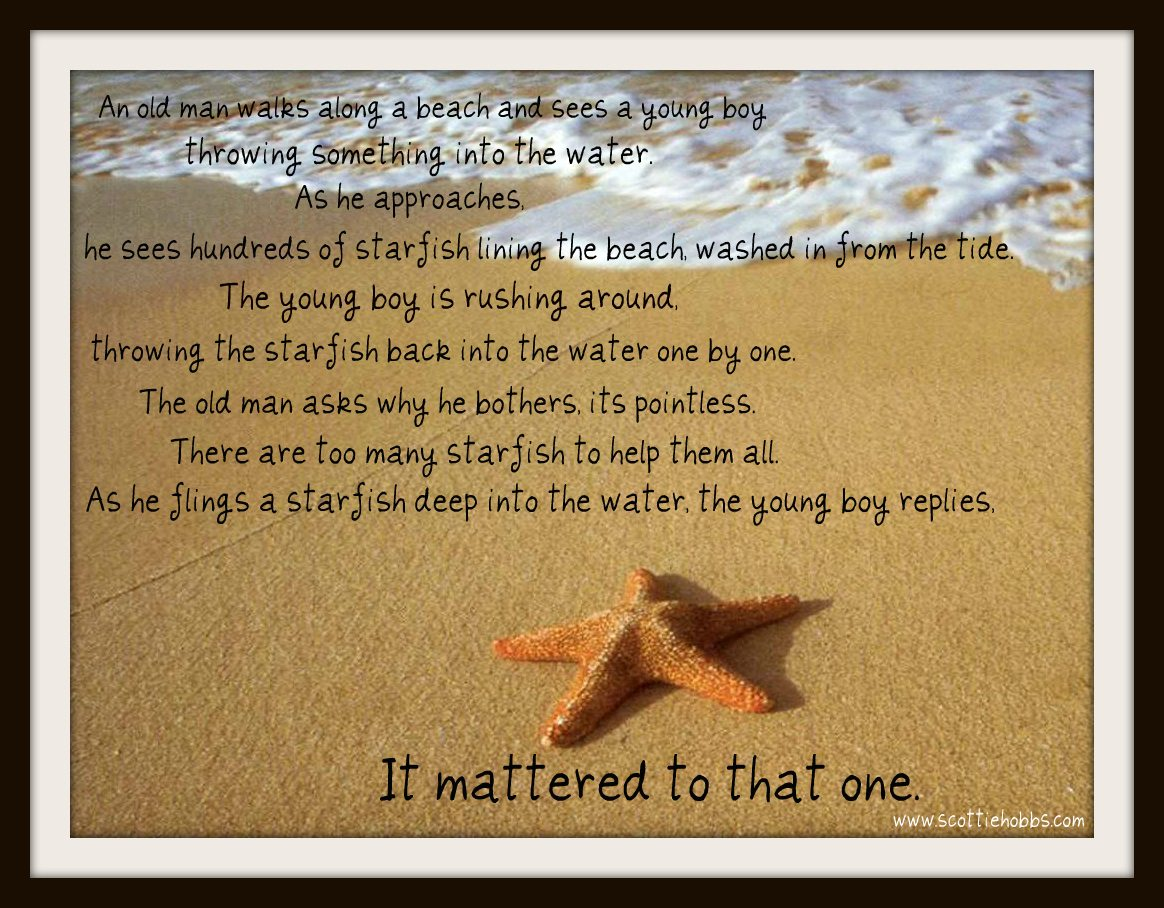 starfish_beach_story